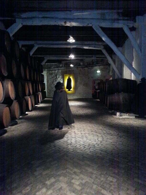 Vinhos Sandeman